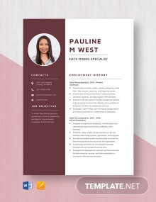 Data Mining Specialist Resume Template