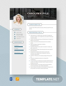 Data Officer Resume Template