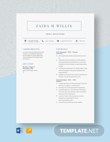 Excel Developer Resume Template