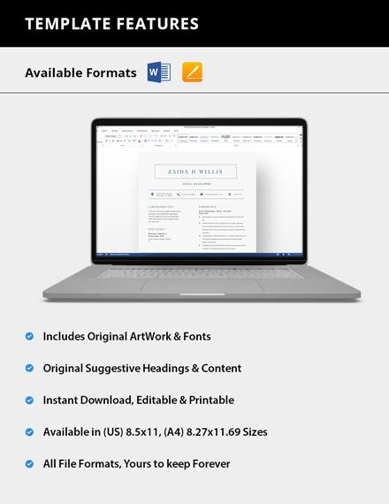 Simple Excel Developer Resume