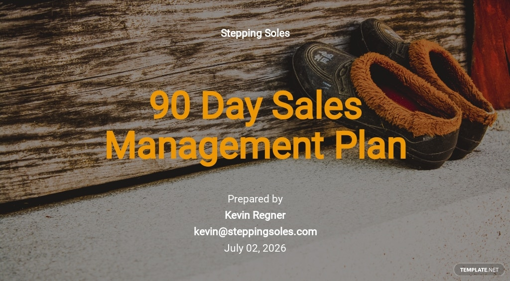 90 Days Sales Management Plan Template