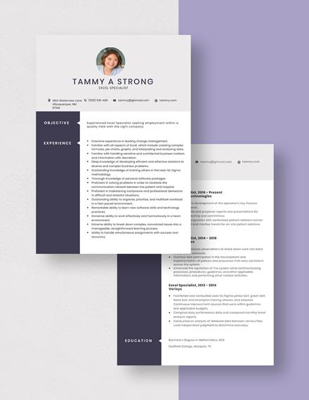 excel specialist resumecv template  word doc  apple