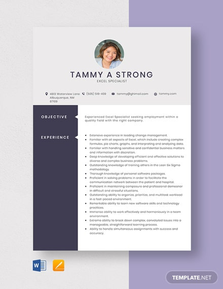 Excel Specialist Resume Template