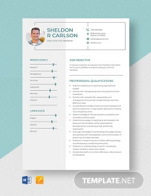 Executive Vice President Resume Template