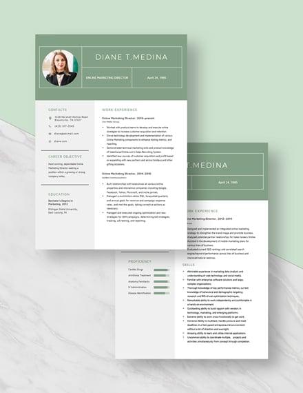 Online Marketing Director Resume Download