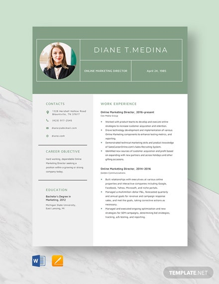 Online Marketing Director Resume Template
