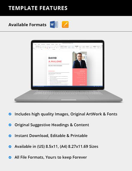 Simple Online Web Designer Resume