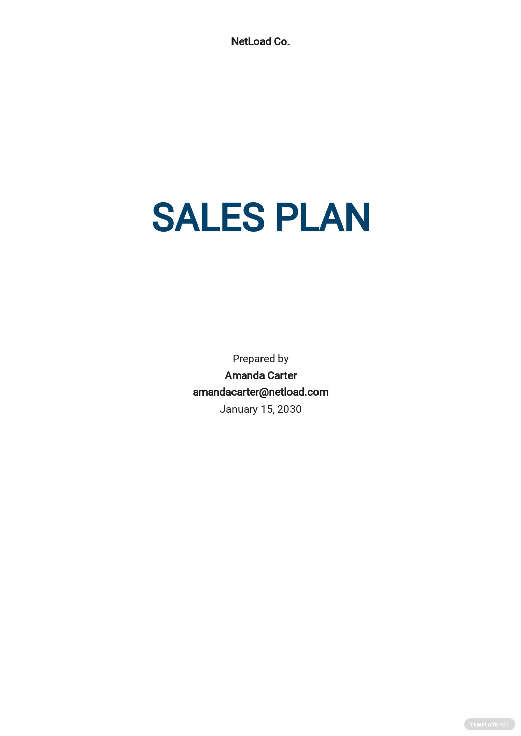 Sales Plan Layout Template