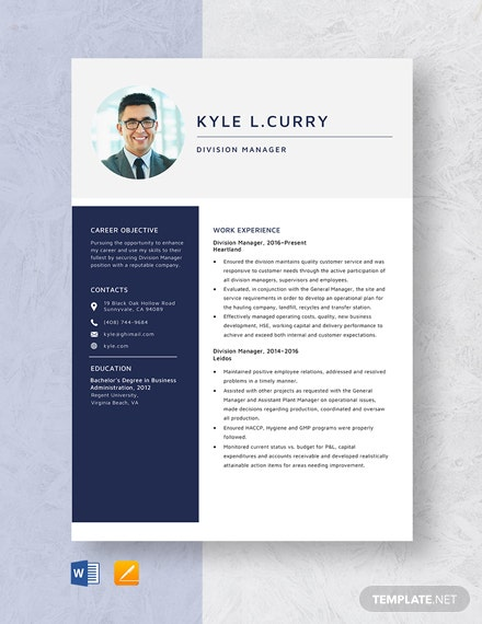Division Manager Resume Template