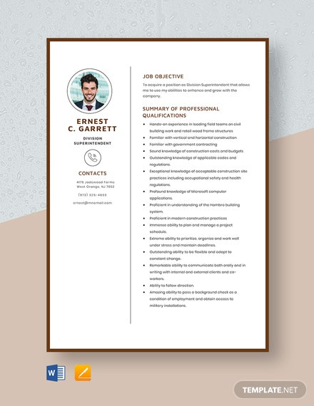 Division Superintendent Resume Template