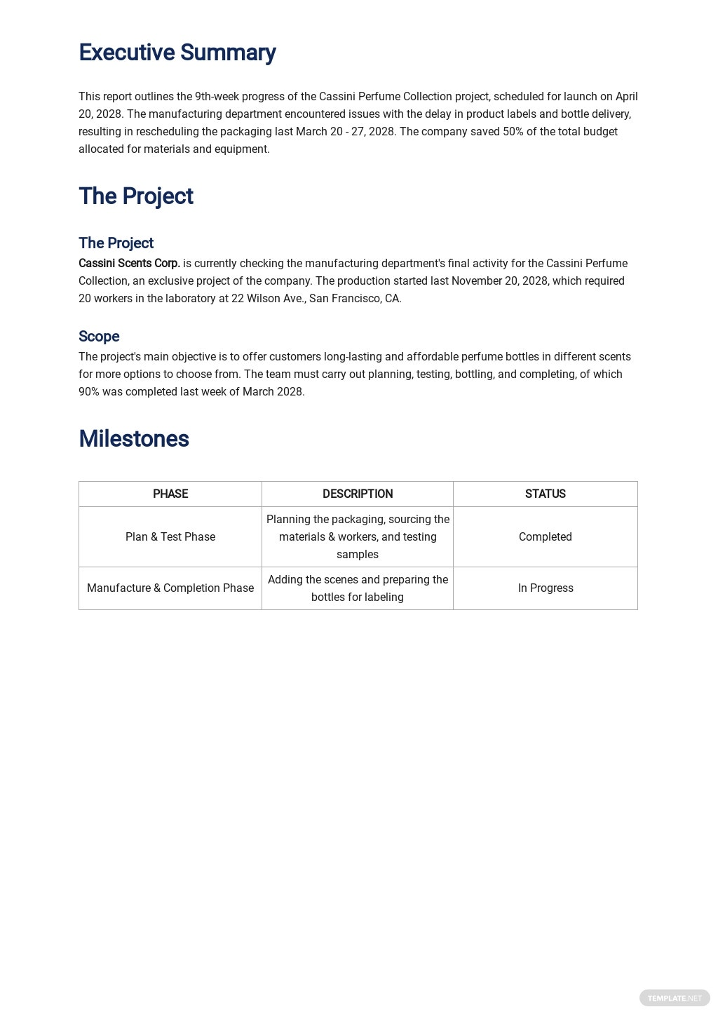 Free Weekly Project Activity Report Template 1.jpe