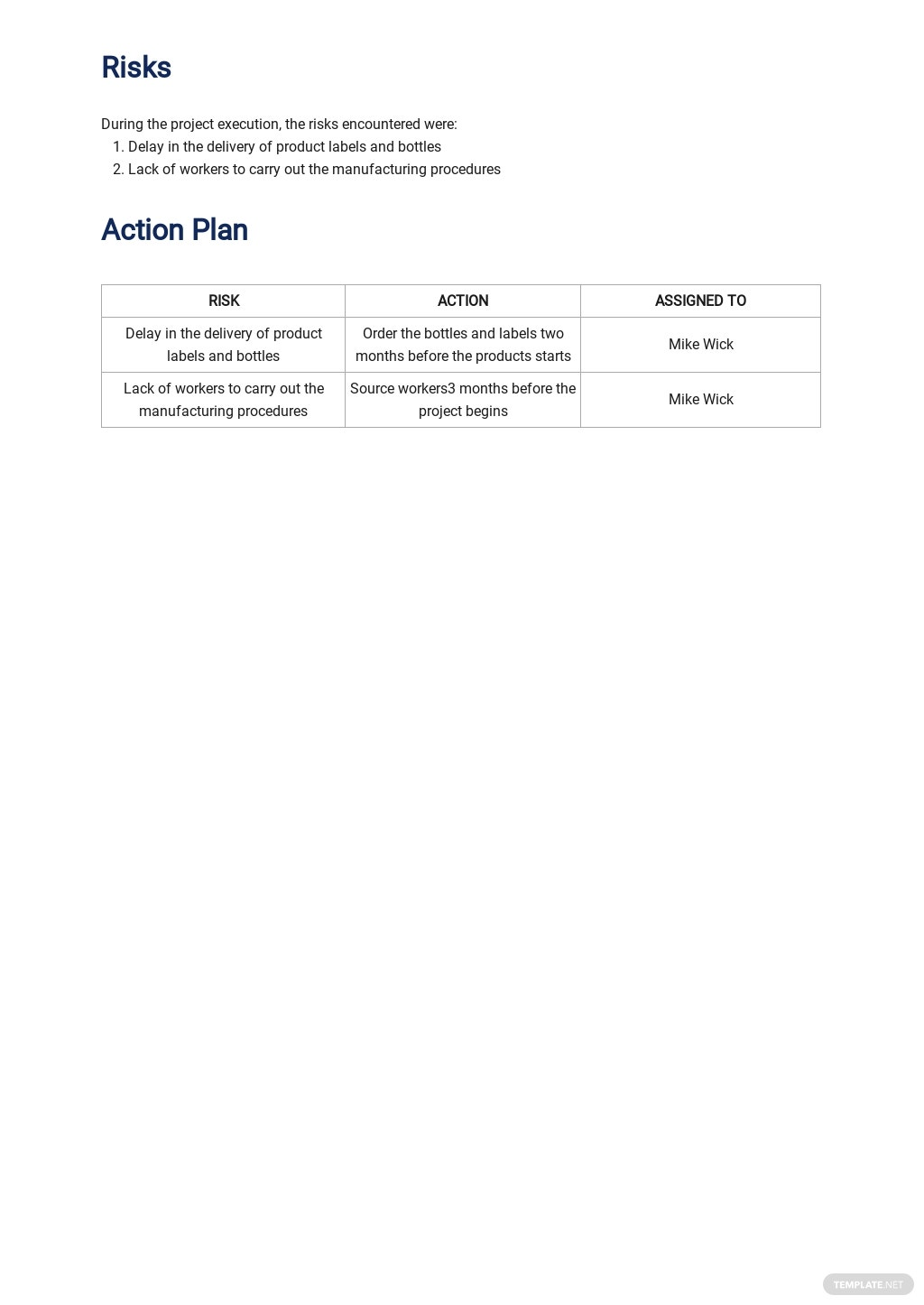 Free Weekly Project Activity Report Template 2.jpe