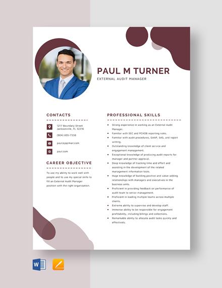 External Audit Manager Resume Template