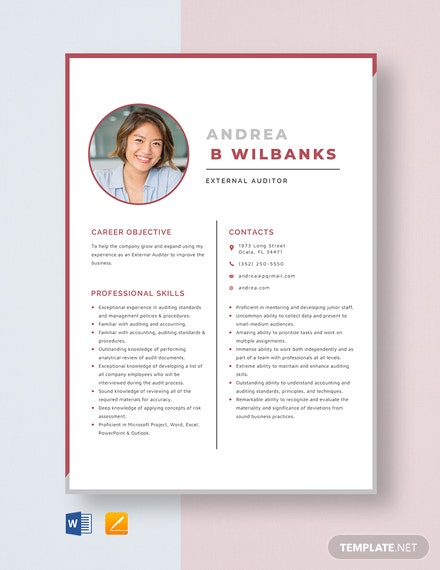 External Auditor Resume Template