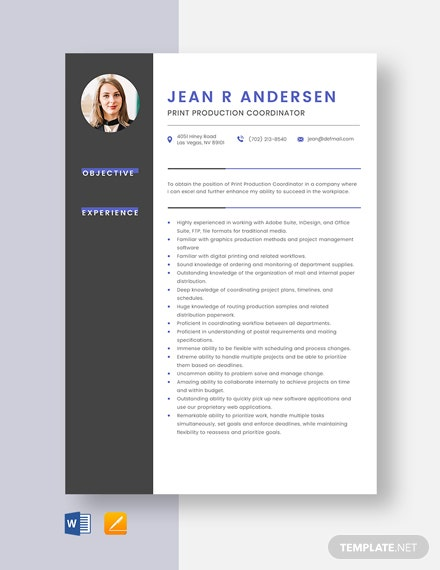 Print Production Coordinator Resume Template