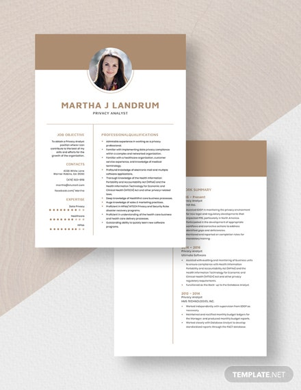 Privacy Analyst Resume Download