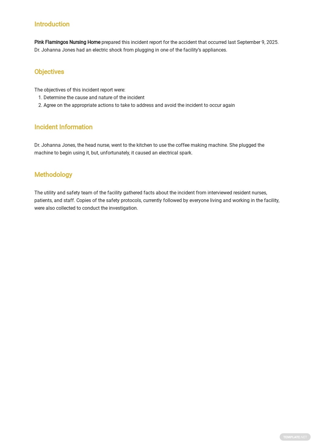 Free Sample Incident Report Template 1.jpe