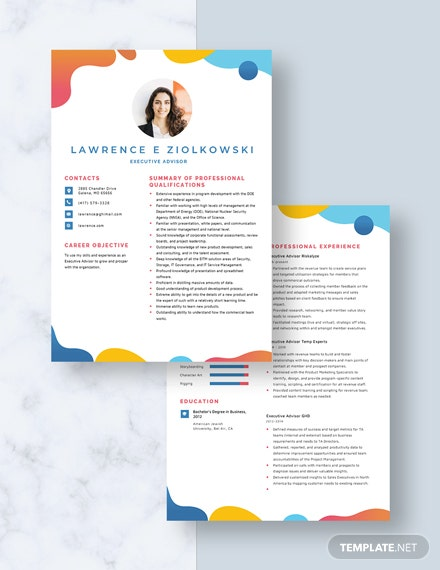 Executive Adviser Resume download