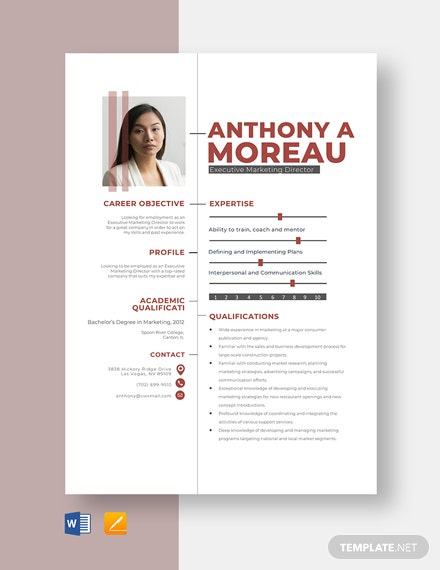 Executive Marketing Director Resume Template