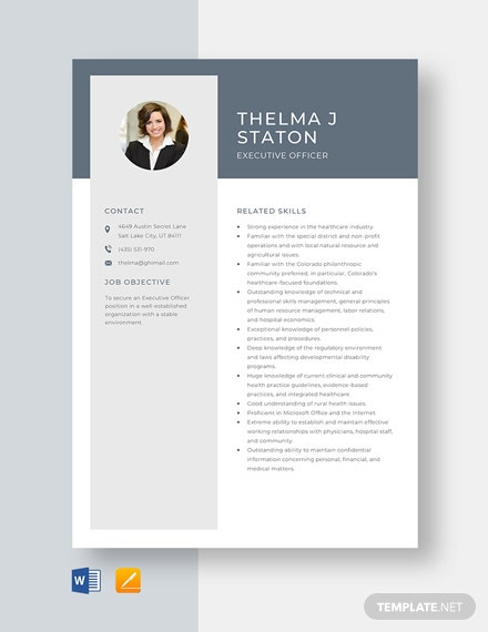 Executive Officer Resume Template