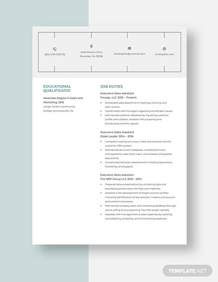 Executive Sales Assistant Resume  template