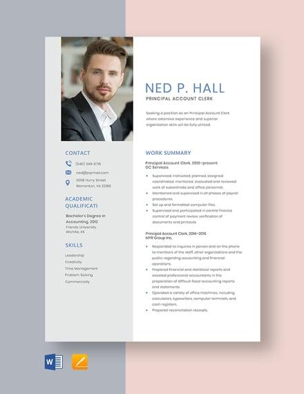 Principal Account Clerk Resume Template