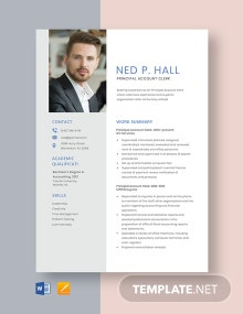 Principal Account Clerk Resume Template
