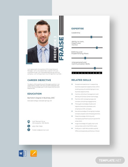 Principal Account Manager Resume Template
