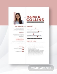 Principal Accounts Specialist Resume Template