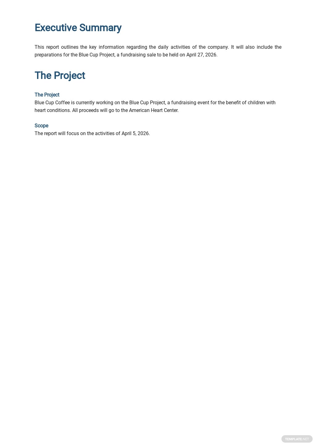 Free Daily Activity Report Template 1.jpe
