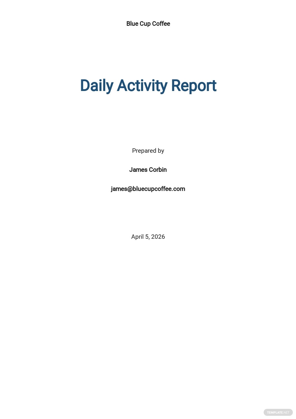 Simple Daily Activity Report Template
