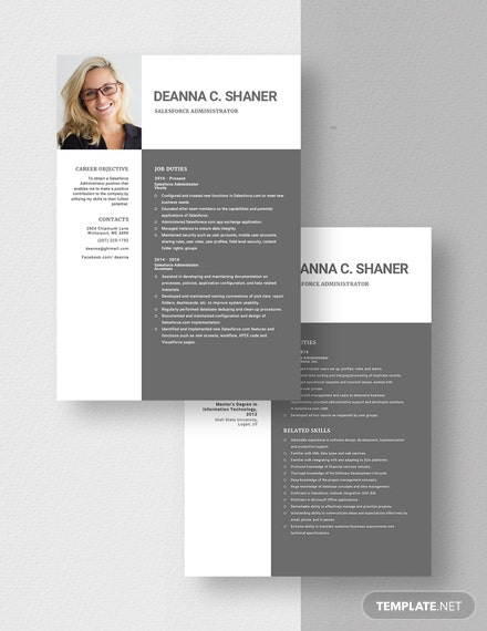 Salesforce Administrator Resume Download