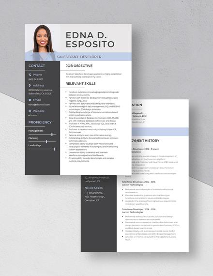Salesforce Developer Resume Download