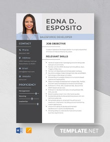 Salesforce Developer Resume Template