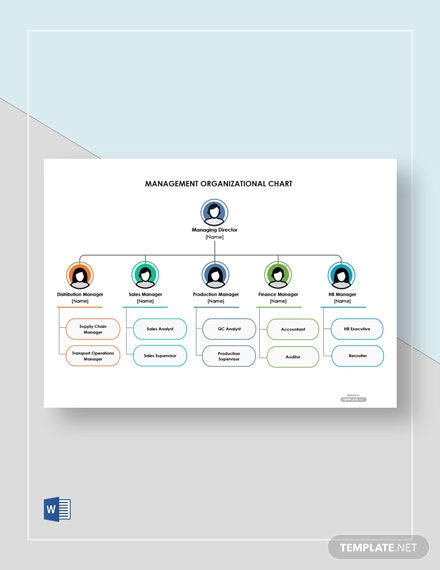 Free Management Organizational Chart Template