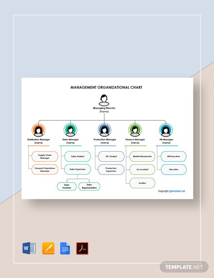 Free Management Organizational Chart Template