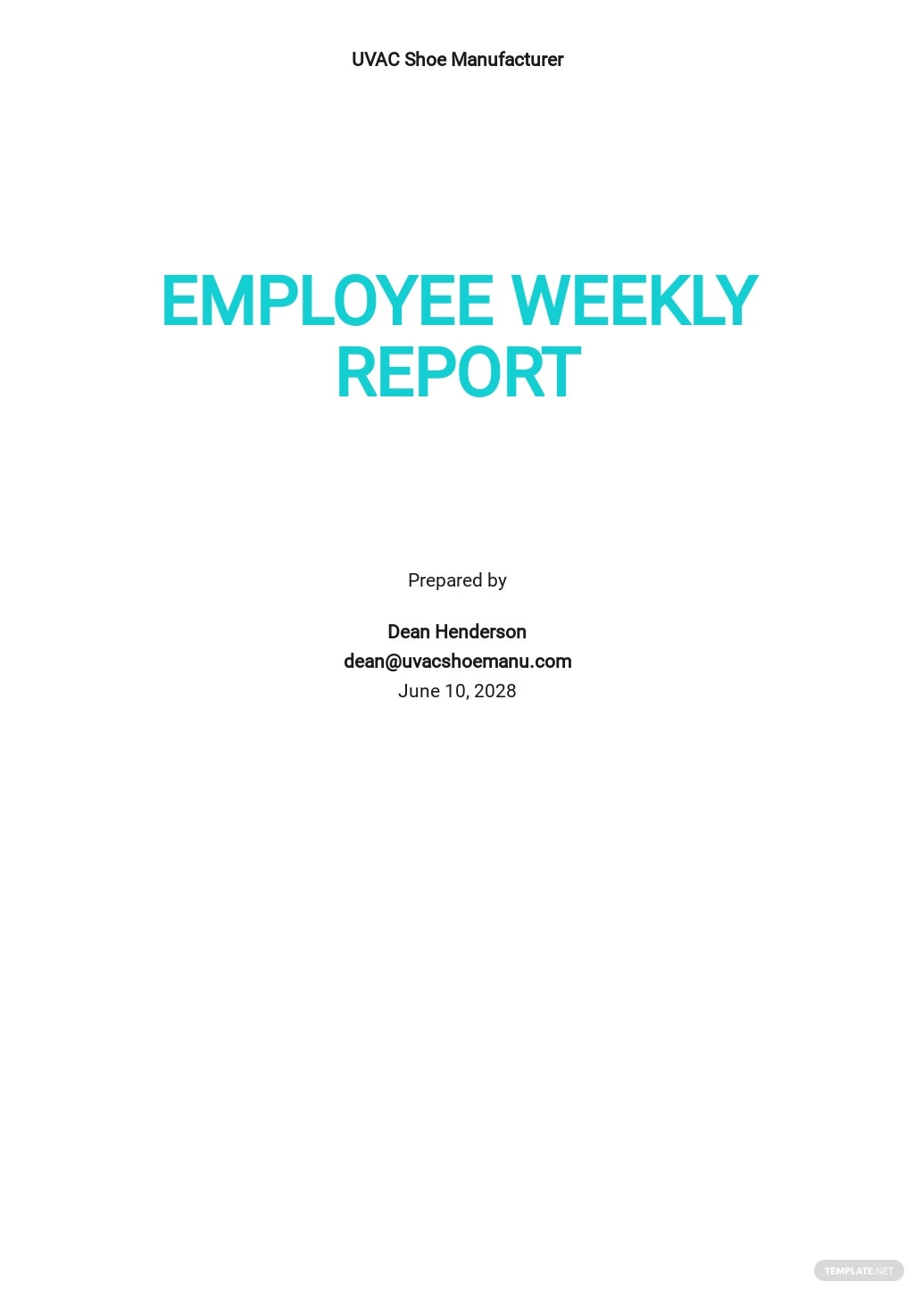 Employee Weekly Report Template