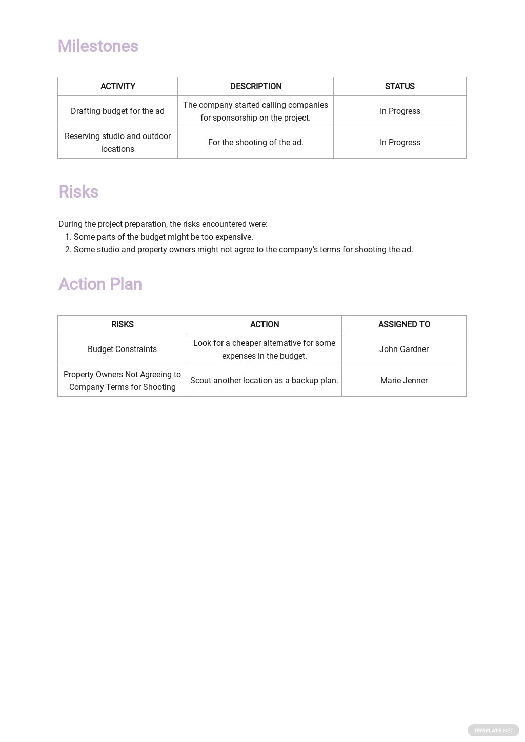 Free Sample Weekly Activity Report Template 2.jpe