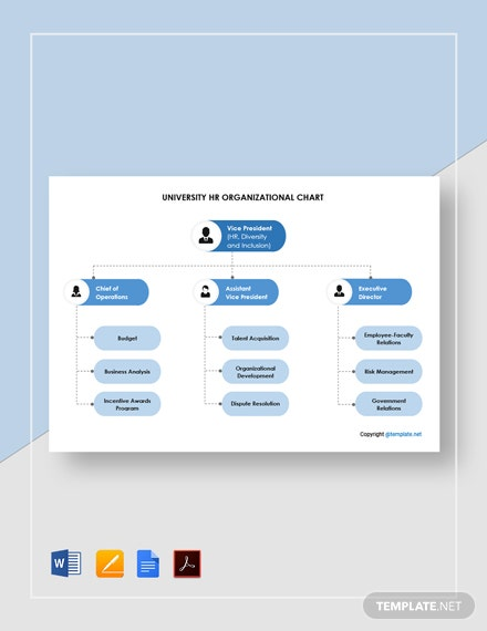 Free University Human Resources Organizational Chart Template