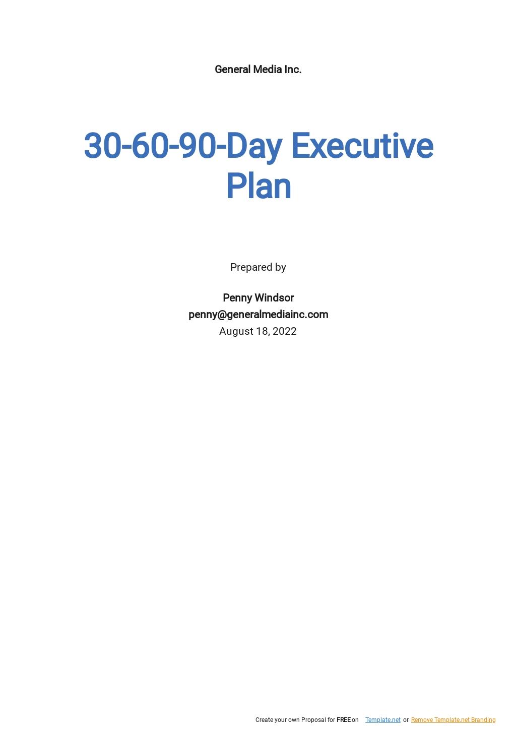 30 60 90 day Executive Plan Template.jpe