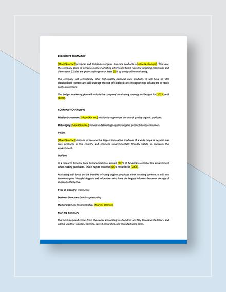 Budget Marketing Plan Download