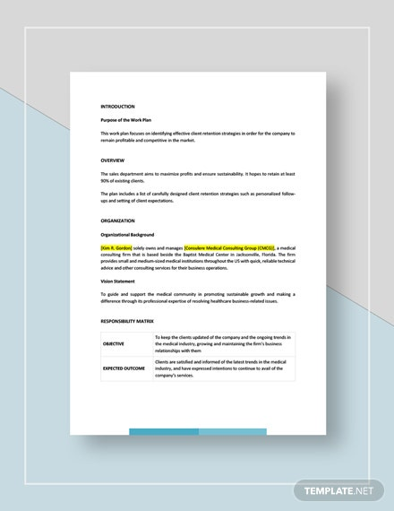 Consultant Work Plan Download