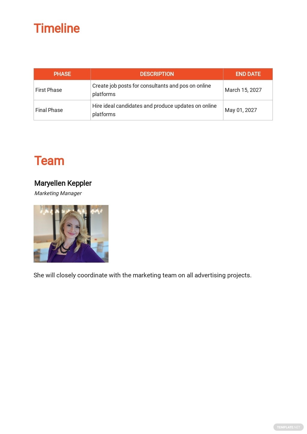 Consultant Work Plan Template 2.jpe