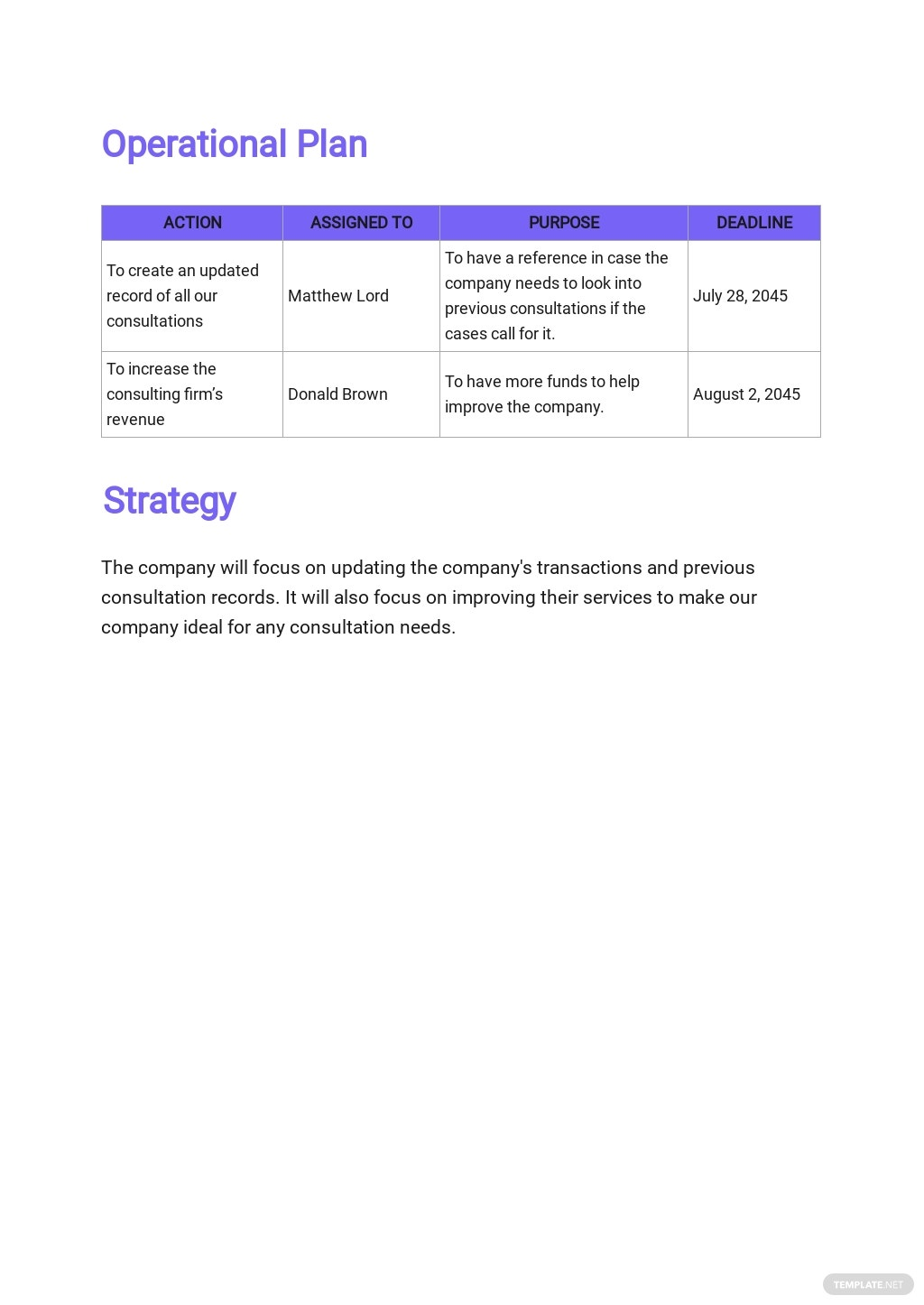 Consulting Operational Plan Template 2.jpe