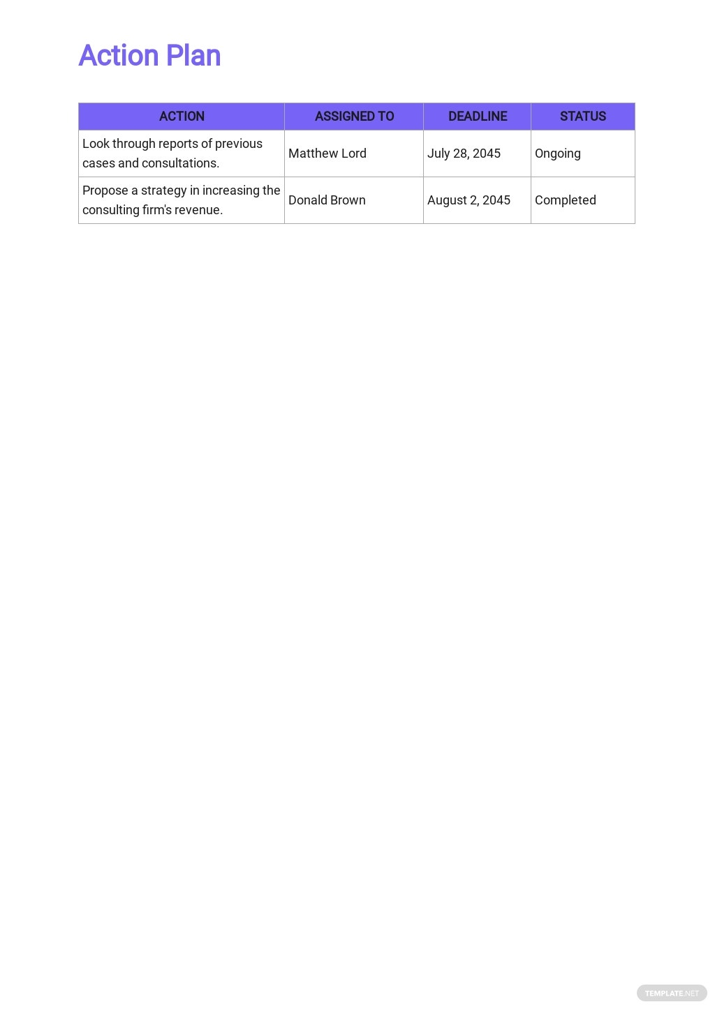 Consulting Operational Plan Template 4.jpe
