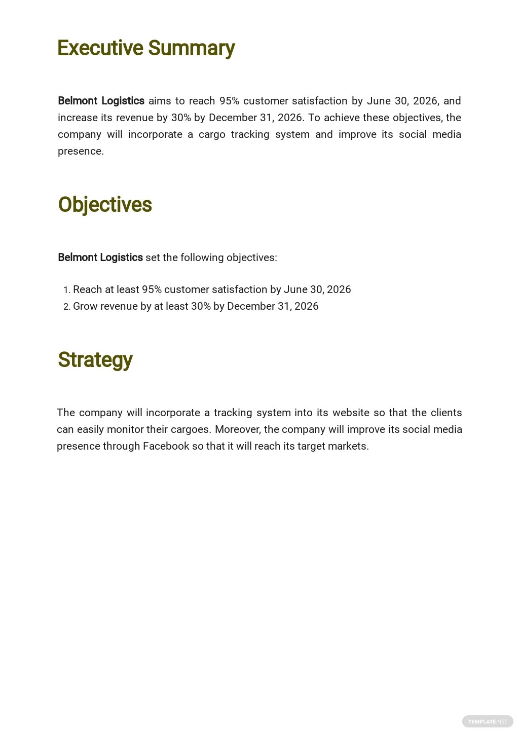 Strategy Operational Plan Template 1.jpe