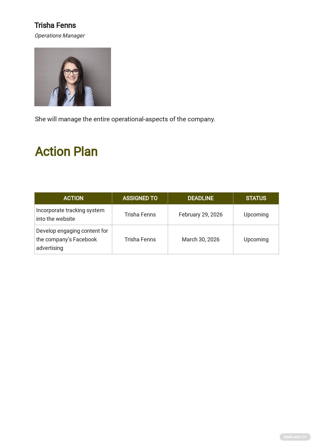 Strategy Operational Plan Template 3.jpe