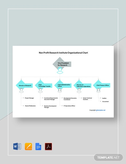 Non Profit Research Institute Organizational Chart