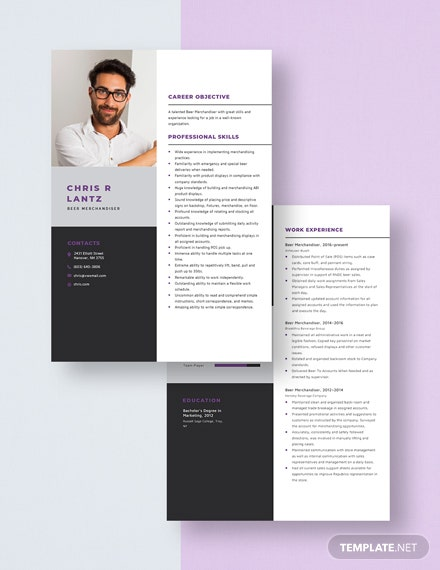 Beer Merchandiser Resume Download
