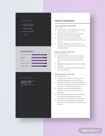 Beer Merchandiser Resume Template